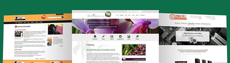 Webdesign Flensburg Referenzen